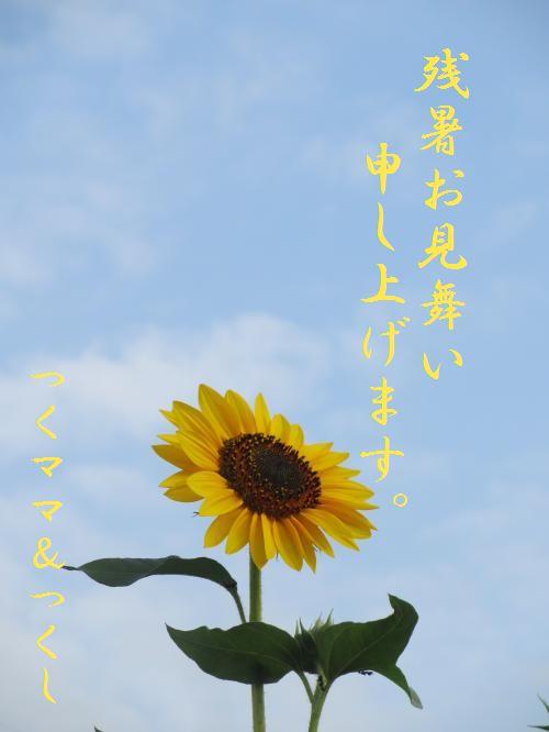 037_convert_20120809125334.jpg