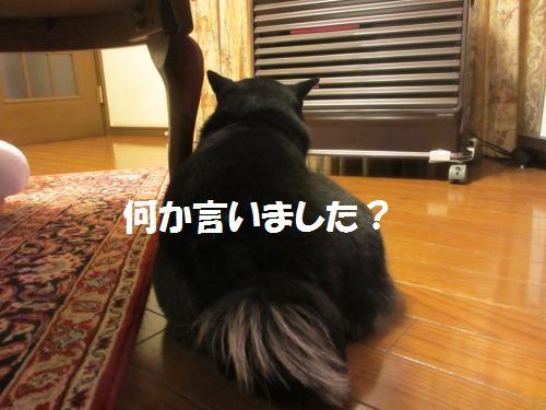 104_convert_20121217180409.jpg