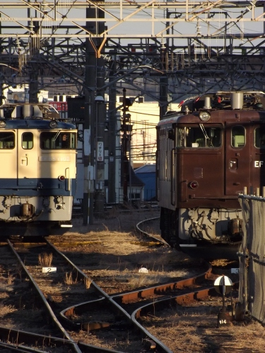 DSCF9558.jpg