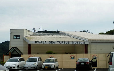日和佐ウミガメ博物館