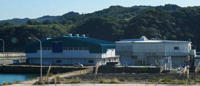 大阪海遊館 海洋生物研究所以布利センター