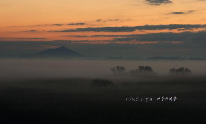 渡良瀬遊水地 2