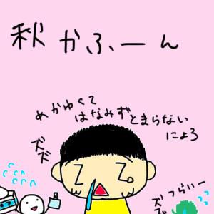 秋花粉01