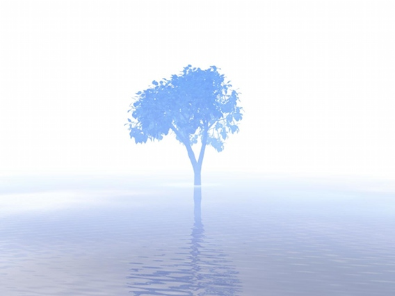 Misty Morning Lake Tree by oreos on deviantART