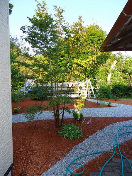 奥の道路から庭を見て1
