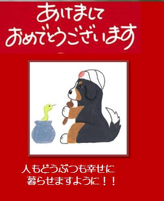 年賀状2013ブログ用