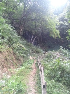 121003 大滝③