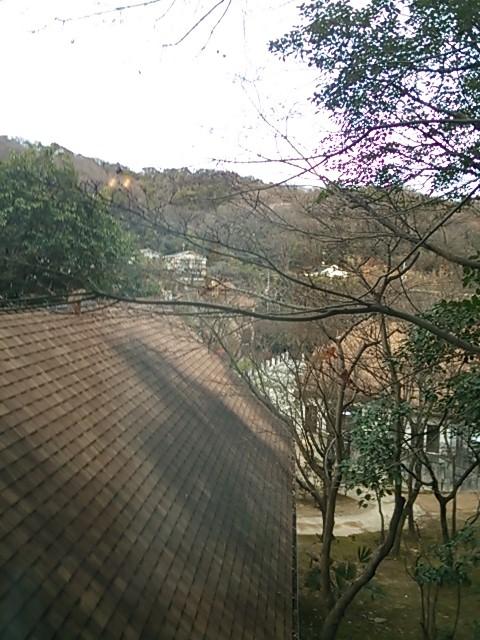 130117 森のcafe CocoRo-小木路-④