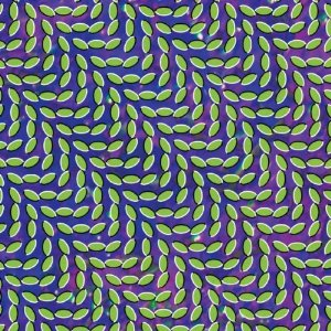 ANIMAL COLLECTIVE「MERRIWEATHER POST PAVILLION」