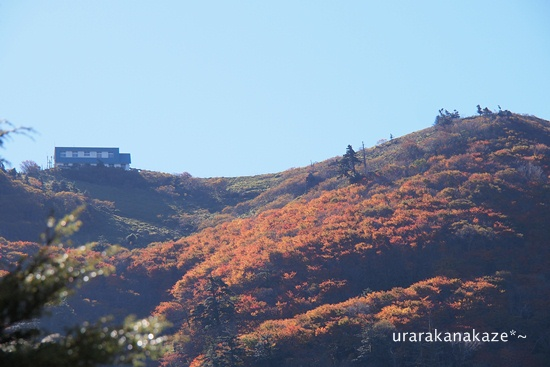 秋の剣山(徳島県)