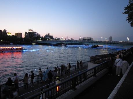 東京ホタル-1