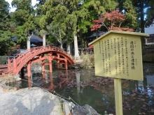 8:23 連間の池と連珠橋