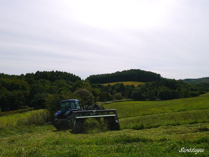 二番草刈取2