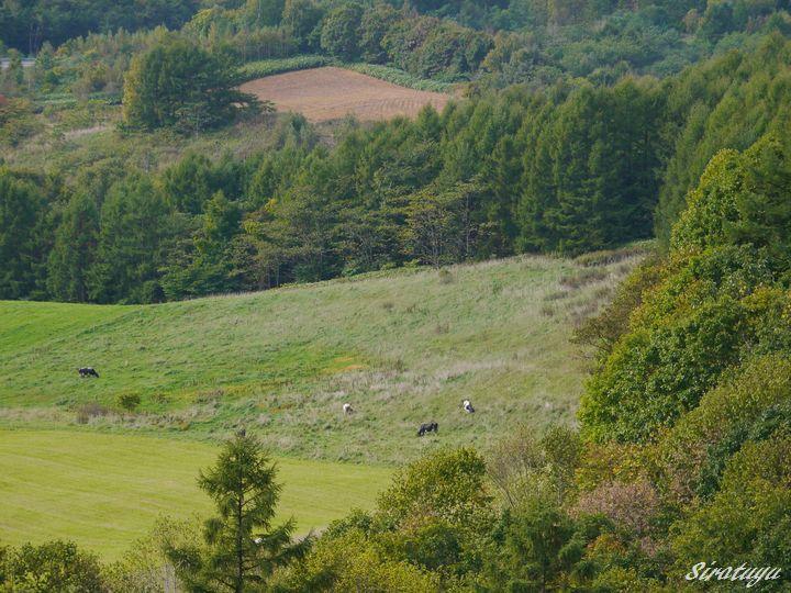山からの風景2