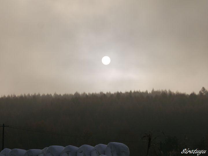 霧の朝の太陽