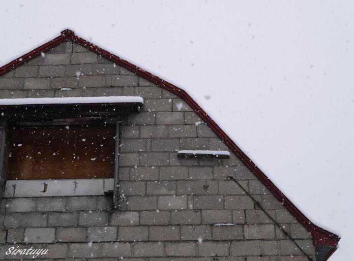 どんどん降る雪
