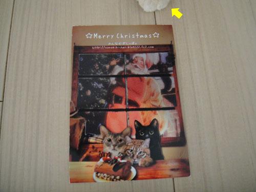 nonokikichaiさんクリスマスカード