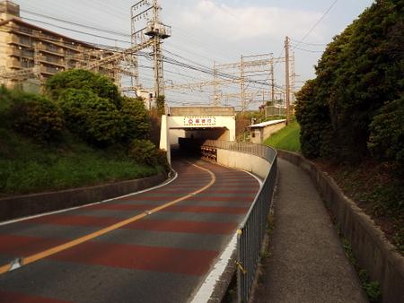 DSCF9831.jpg