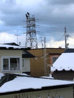 2012-11-28teiden5.jpg