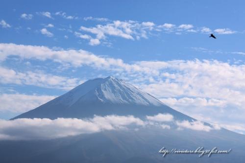 鷹と富士山