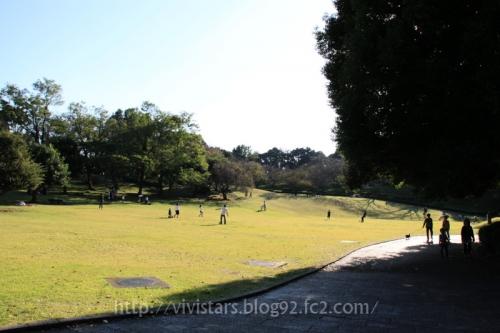 秋の岩本山公園