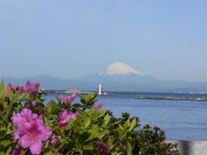 葉山からの富士見0422b
