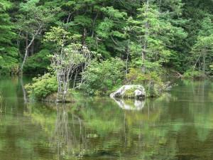 明神池二の池0715a