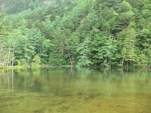 明神池一の池0715b