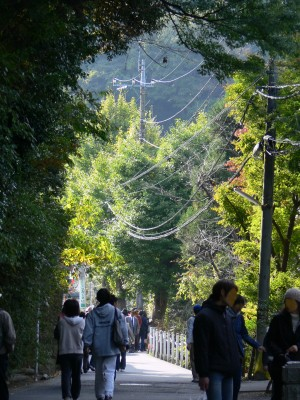 北鎌倉1118ta