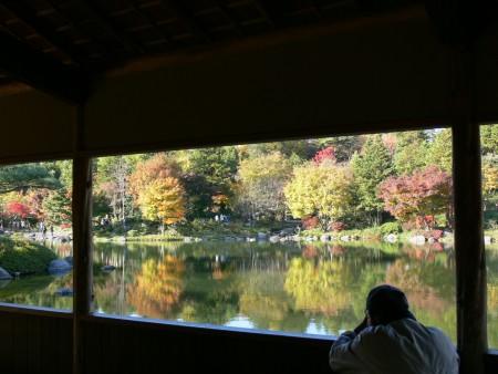 紅葉の日本庭園1125tb