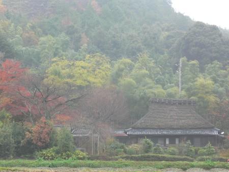 秋の風景1126ta