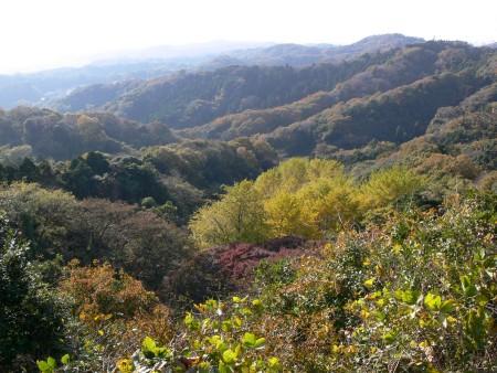 天園からの風景1202ta