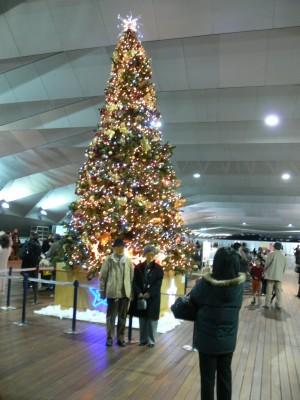 クリスマスツリー1224ta