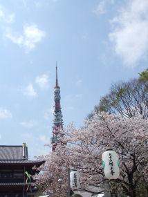 増上寺0404a