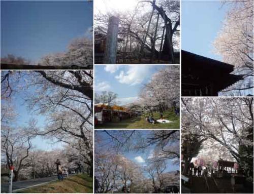 kabasakura_convert_20120421142135.jpg