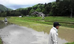 田植え2012