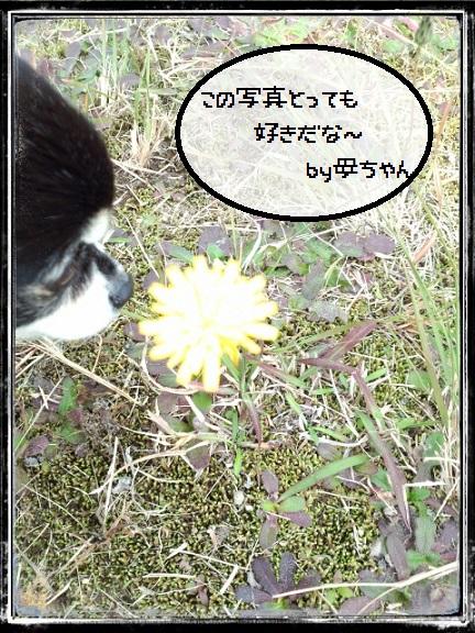 CYMERA_20141124_183049.jpg