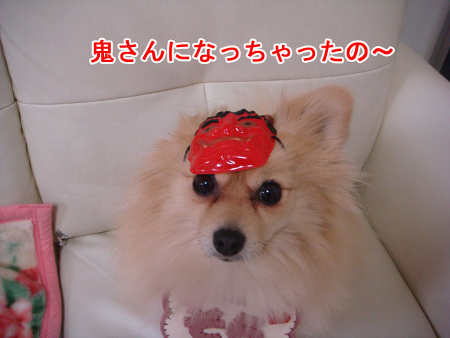 02_05_04.jpg