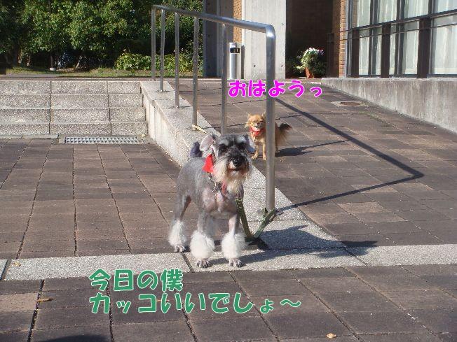 10_27_04.jpg