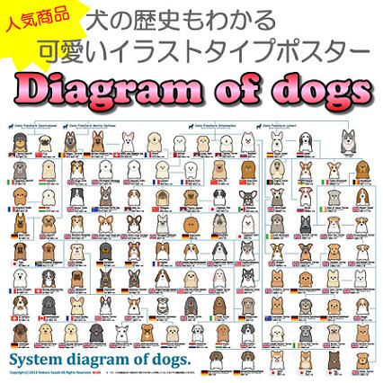 系統図・・・・・