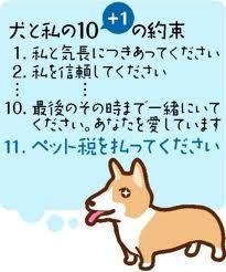 犬と私の10+1の約束