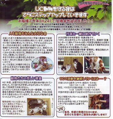 『NPO法人UC動物を守る会』チラシ003