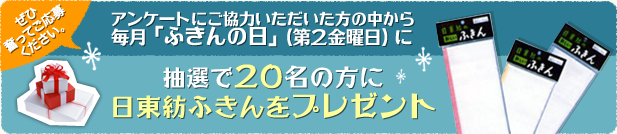 N_campaign.jpg