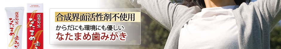 hamigaki_p_ver.jpg