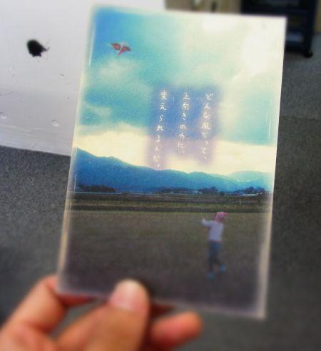 noji-.jpg