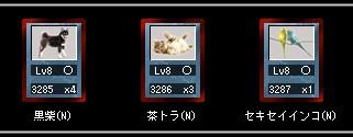 2013y03m07d_005612076.jpg