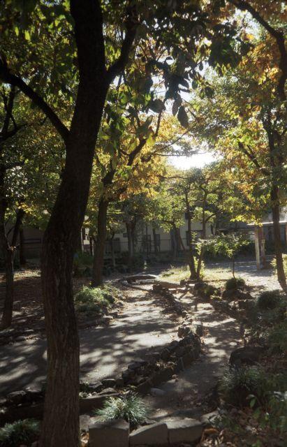 秋深し2012-10f