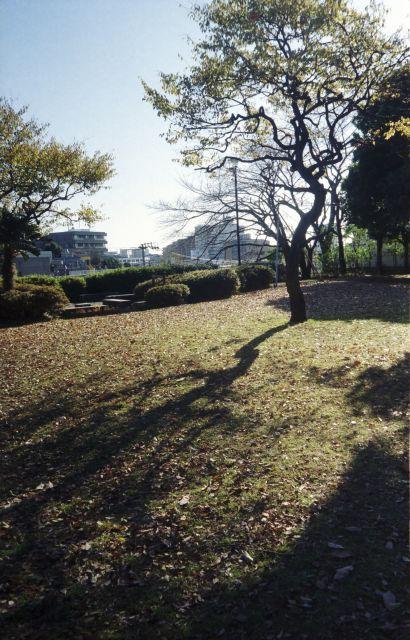 冬景色2013-01b