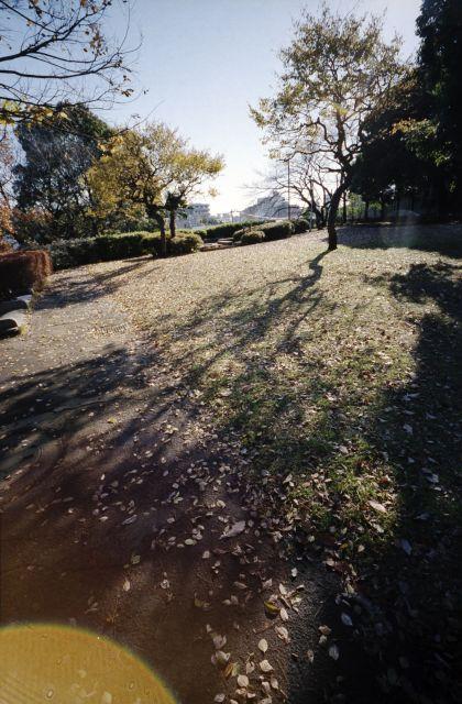 冬景色2013-01a