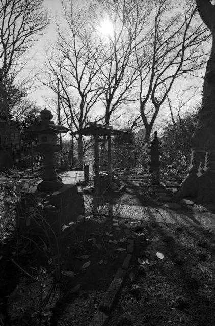 冬景色2013-02b